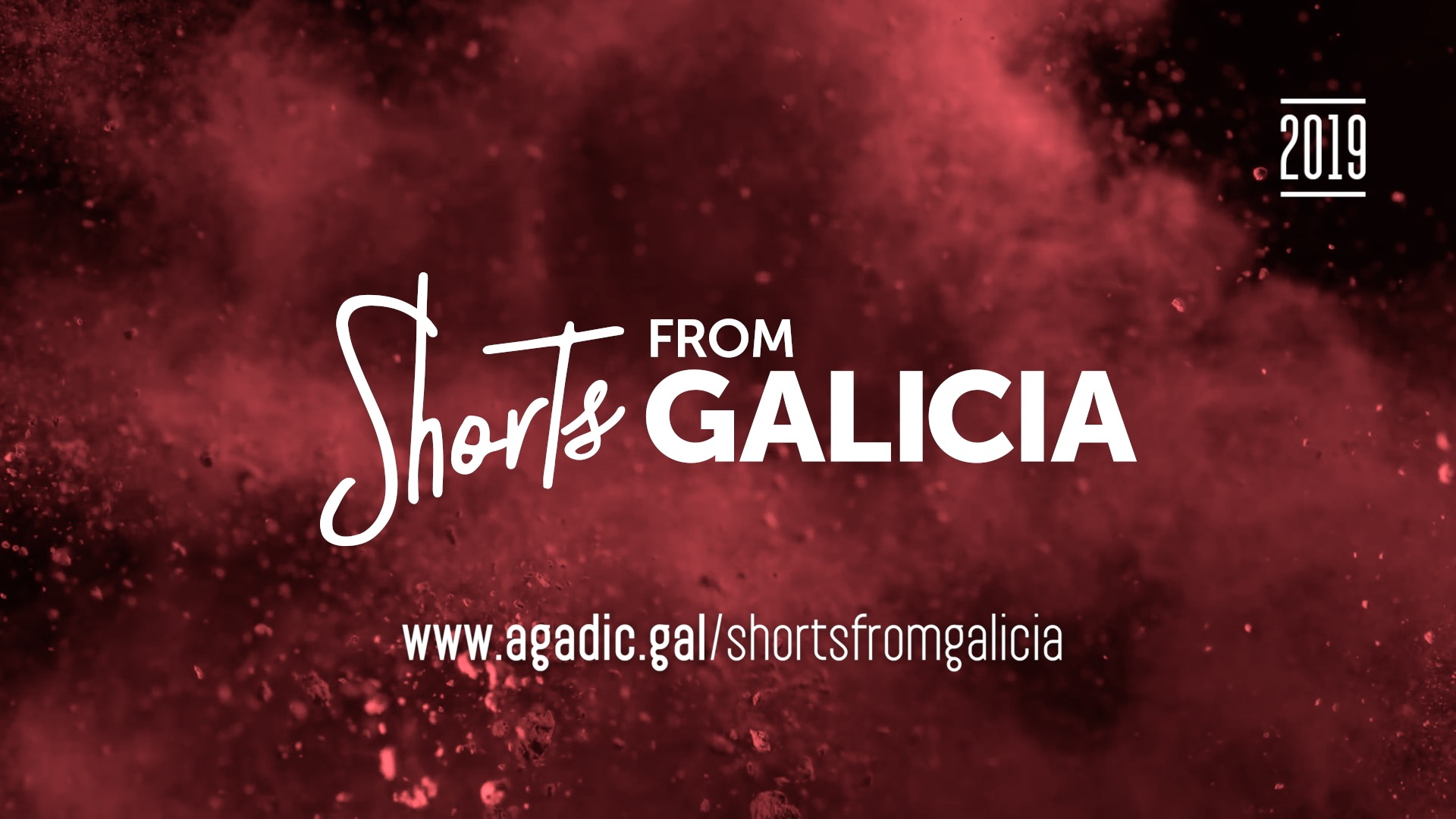 Shorts from Galicia
